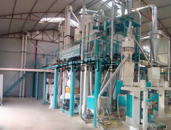 40吨玉米加工设备